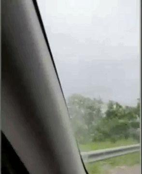 澳一条3米长地毯蟒爬上挡风玻璃,被带着行驶50公里,却不跌落