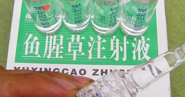 中国药害事件回顾:鱼腥草注射剂致死事件