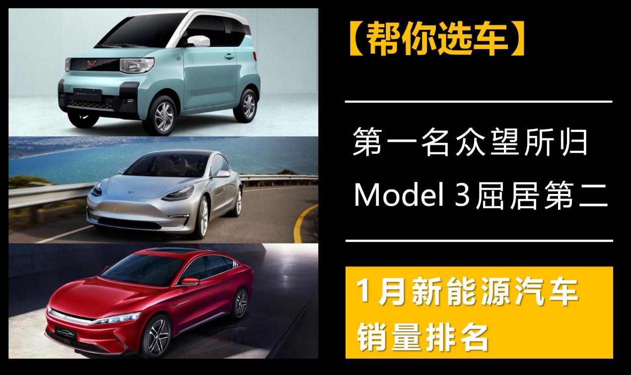 第1名众望所归,Model 3屈居第2,新能源汽车1月销量