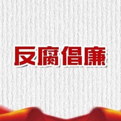 江苏苏美达能源控股有限公司原副董事长被开除党籍和公职