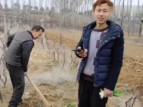 农村多年不来往的亲戚,突然跑地里挖葡萄树,家人这样做的对吗?