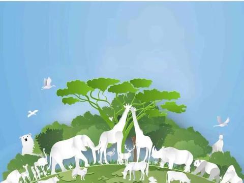 【保护生物多样性】贺兰山·动物篇⑥
