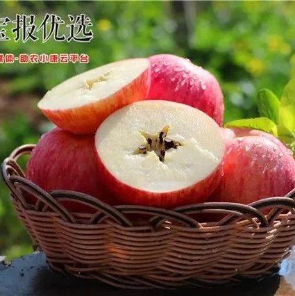 凤阁岭冰糖心红富士苹果限时秒杀中~