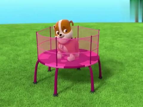 汪汪队:毛毛跳床跳的太低了,狗狗们都喊高一点,一下跳到树上了