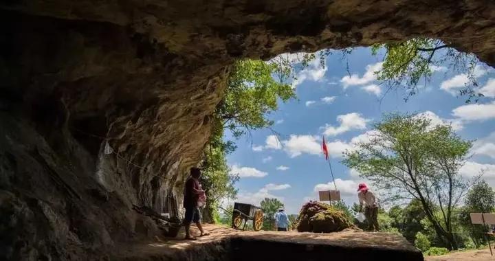 2020年度全国十大考古新发现初评结果揭晓 四川宣汉罗家坝遗址入围