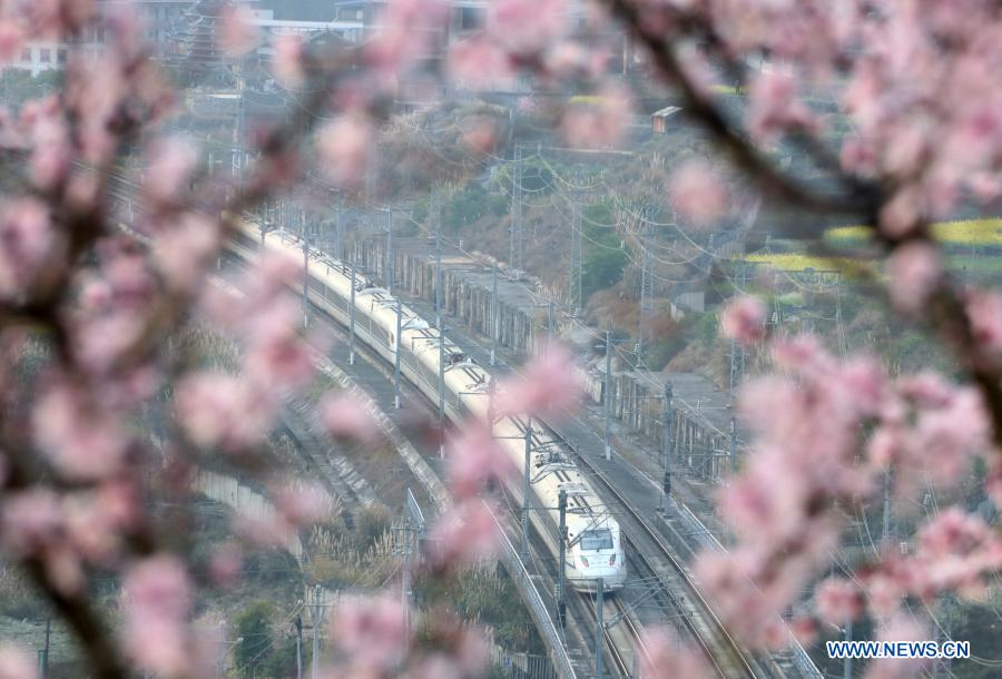 A train runs near Luoxiang Township, Congjiang County of southwest China's Guizhou Province, Feb. 23, 2021. (Photo by Yang Daifu/Xinhua)