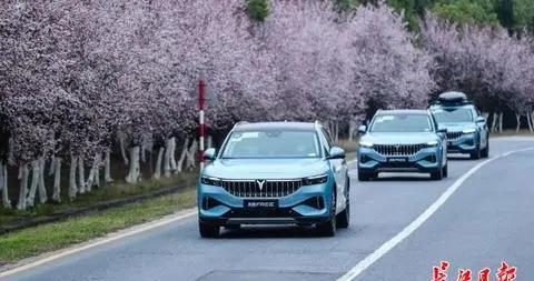 """岚图首款新车测试,""""武汉造""""高端新能源汽车上市进入倒计时"""