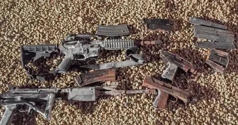 美国一房主在自家后院种树 意外发现一袋子枪支