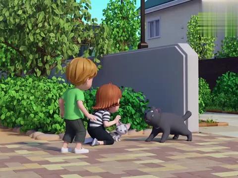 朱莉给公园里的猫检查身体,遇到只肚子疼的猫给它搓搓肚子好多了