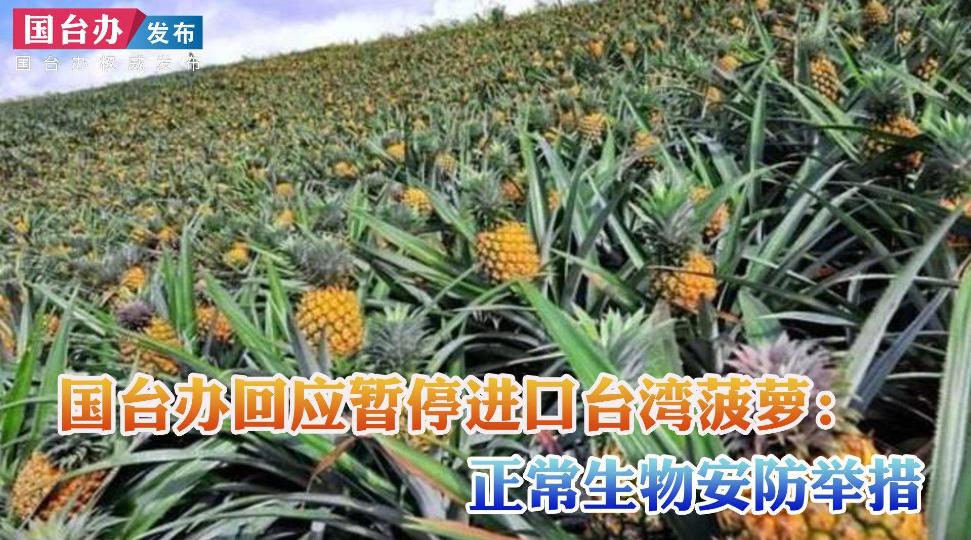 国台办回应暂停进口台湾菠萝:正常生物安防举措