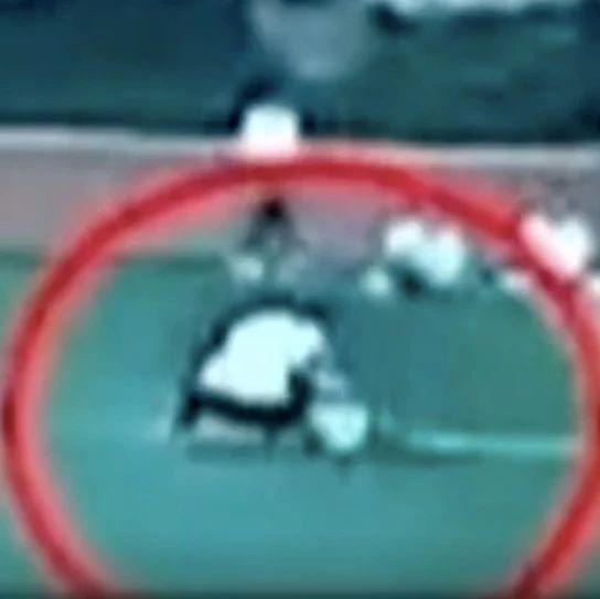 一小学生球赛猝死,法院:校方承担3成责任