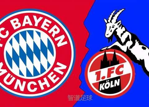 拜仁vs科隆前瞻:拜仁争胜避免3轮不胜 科隆为保级而战