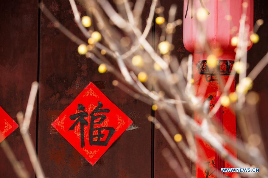 Photo taken on Feb. 27, 2021 shows wintersweet bloom at Wofo Temple in Beijing, Capital of China, Feb. 27, 2021. (Xinhua/Li Jing)