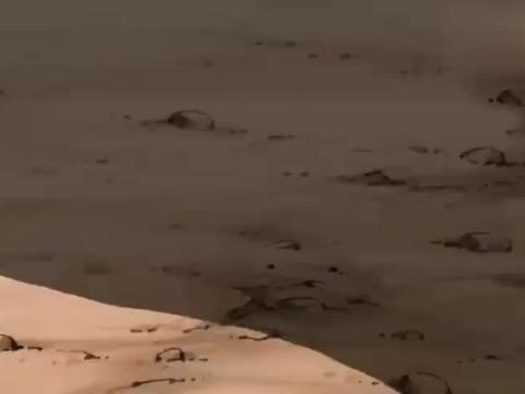 哆啦A梦:恐龙脖子太长,一个劲回头,大雄都快跑断腿了