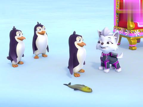汪汪队:珠珠来南极滑雪,看到空中巡逻机,事情有些奇怪!