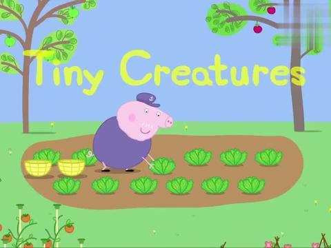 小猪佩奇:佩奇在猪爷爷的花园玩,竟然发现了怪兽,真可怕呀!