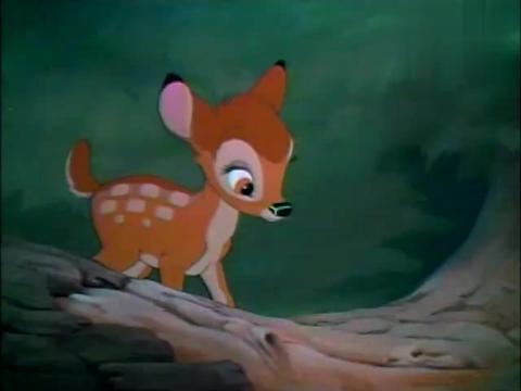 小鹿斑比:小兔子真可爱,还教小鹿怎么跳!
