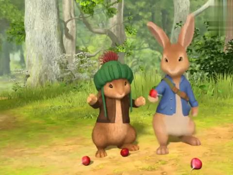 比得和本杰明刚要吃萝卜碰到了莉莉,莉莉竟然没吃过萝卜