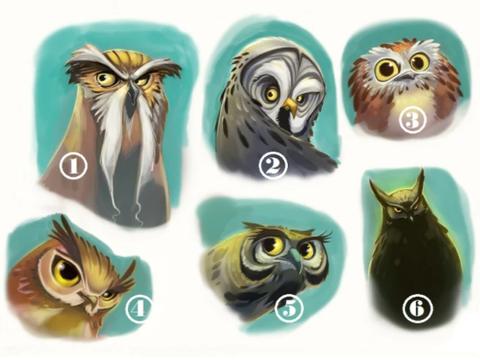 【占卜预测】选择一只猫头鹰,让它给予你当下精确建议