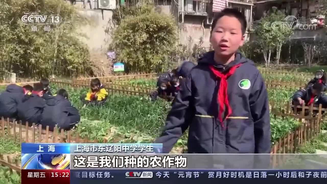 看视频!上海:改革7年完成214项改革任务