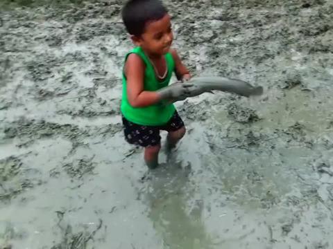 聪明小男孩户外泥坑里抓鱼,大鱼抓了一条又一条,太开心了