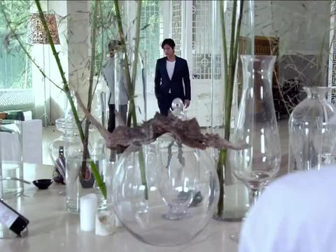 远爱:客人竟把桌上陈设蜡烛当甜品,店长不知所措,初夏机智解决