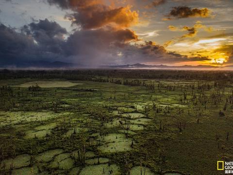 带你了解菲律宾这片湿地上的利益纠葛