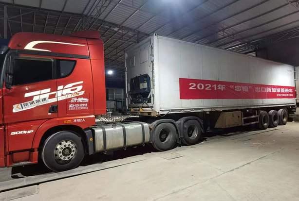 """""""忠橙""""出口新加坡 出口业务实现常态化"""