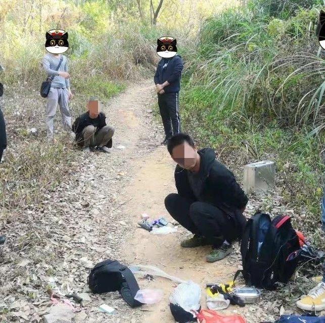 """""""网红""""拍摄视频带货,非法猎捕国家保护动物被刑拘"""