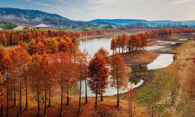 未来五年江苏将提高县域经济发展质量推动小城镇多元特色发展