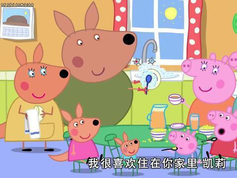 小猪佩奇:袋鼠妈妈真厉害,整个海洋都是办公室,真是壮丽!