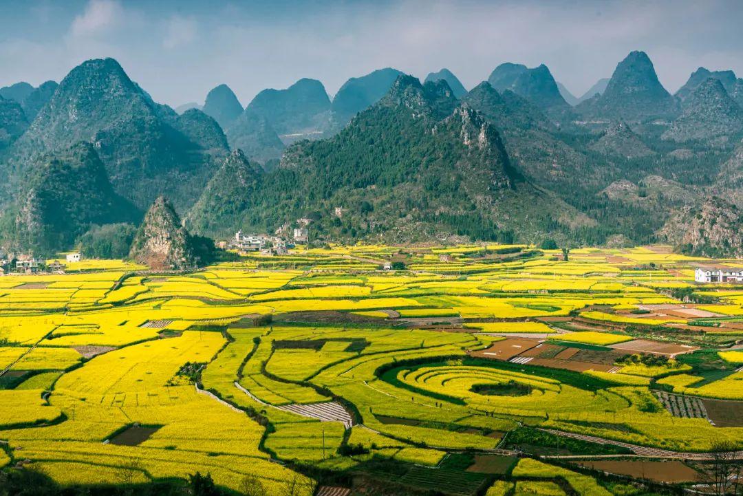 """中国最美""""油菜花海""""万峰林 却鲜有人知"""
