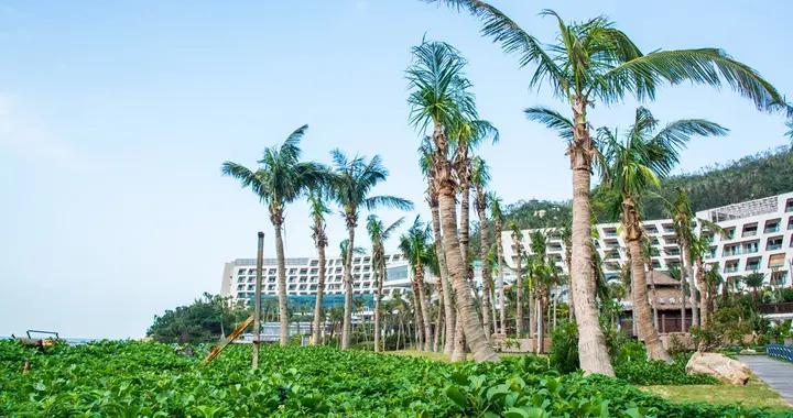 广东两座美丽小岛,景色媲美巴厘岛和马尔代夫,此前知道的人不多