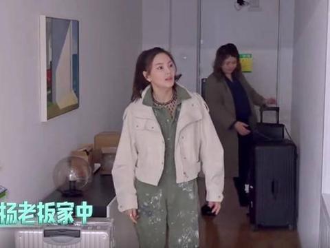 经纪人杨天真豪宅大公开 引发网友集体羡慕