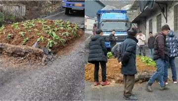 云南一村路被村民种菜,大货车无法通行!