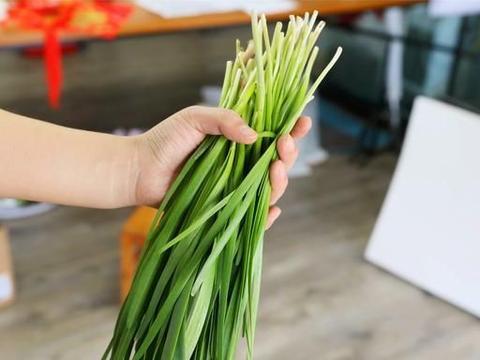 """春天买韭菜,搞清""""紫根""""和""""白根""""的区别,菜农:味道差别大了"""