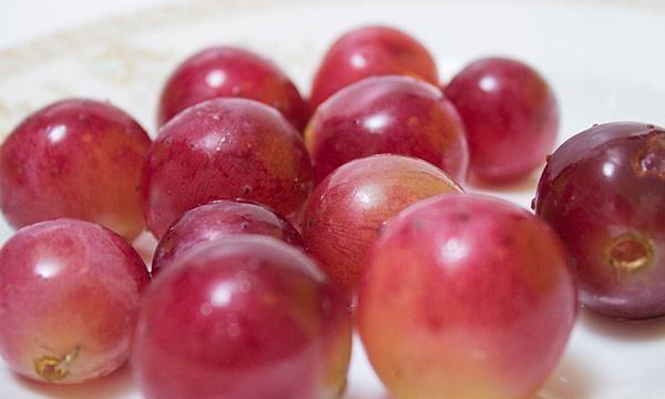 吃水果能预防骨质疏松?50岁后,多吃哪些水果对骨骼好?