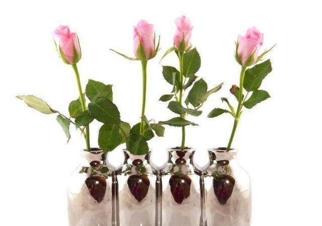 心理测试:你喜欢哪个花瓶,测你是不是你心爱之人心里最重要的人