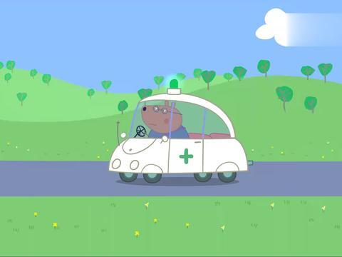 小猪佩奇:棕熊医生治好了大家,自己却被传染了,怎么办呢!