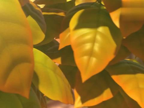 萌鸡小队:贪吃的大宇哥哥,光是听到果子,肚子就咕噜咕噜叫了!