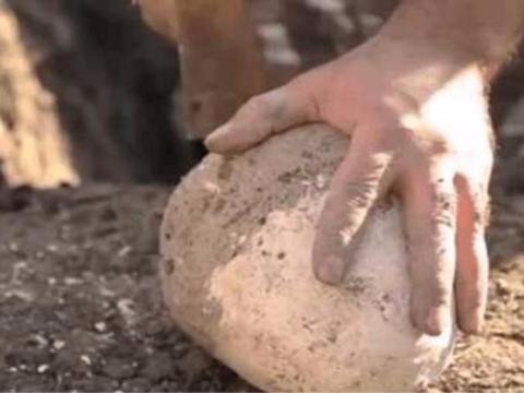 小伙山里捡到白色的蛋,打开之后金光闪闪,暗自窃喜