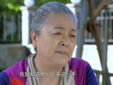 麻辣芳邻:姑娘刚和前夫复婚,对方的前妻就找上门,真是一团乱麻