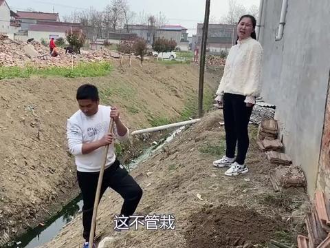 辣椒姐从娘家带4棵石榴树,弟媳妇见了非拿2棵,老武嘴快惹怒媳妇