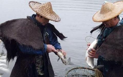 高手在民间,闽北神奇弓鱼术,能让鱼离水几天不死,是真的吗?