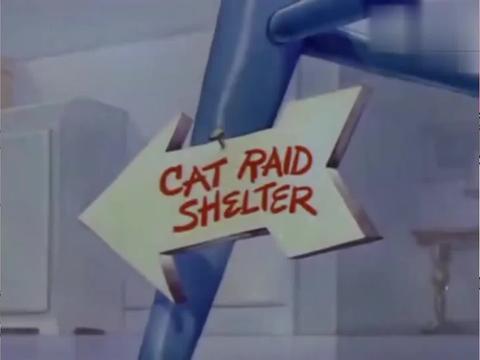 猫和老鼠:杰瑞放下礼物就跑,这个爆竹喜欢吗,汤姆应该会喜欢的