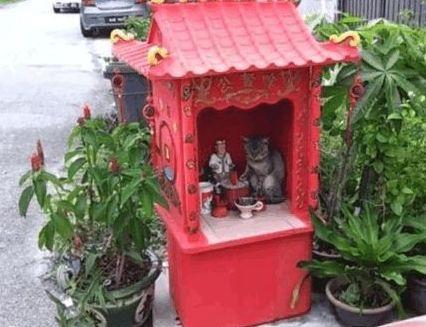 男子在土地庙上香,感觉不对劲,仔细看清后乐开了花