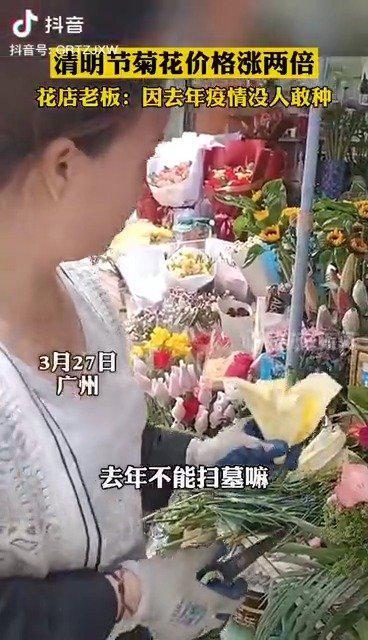 广州清明节菊花价格涨两倍