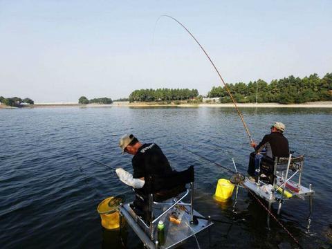 诱钓结合的蜂蜜南瓜鱼饵,专钓鲤鱼和草鱼