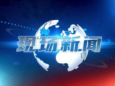 """朝阳区白家庄小学:""""走近冬奥 爱上冰雪""""主题研讨会成功举办"""