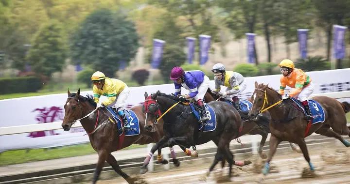 4月3日,中国速度赛马公开赛在武汉开闸